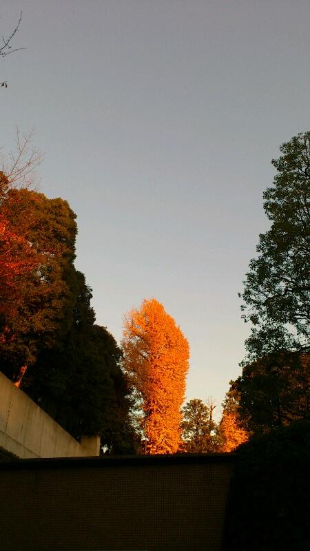 六本木散歩